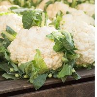 Cauliflower - Snowball seeds