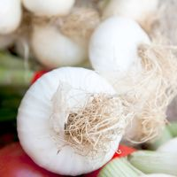 Onion Paris Silverskin Seeds
