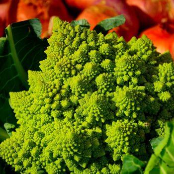 Cauliflower Minaret seeds