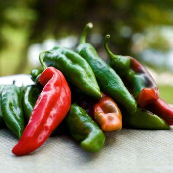 Chilli Pepper Slim Jim seeds
