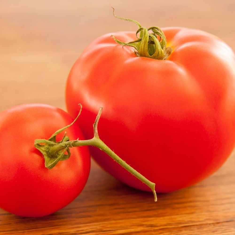 Tomato F1 BIG Boy seeds