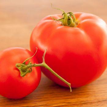 Tomato F1 BIG Boy seeds