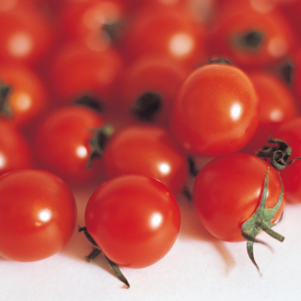Tomato Cherry Garden Pearl  seeds