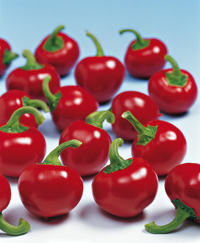 Chilli Pepper Large Red Cherry seeds