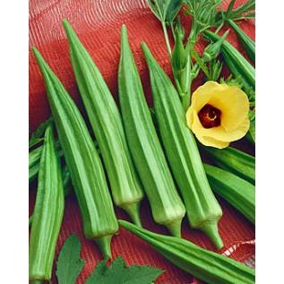 Okra - Clemson Spineless - 20 seeds