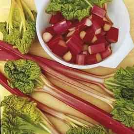 RHUBARB - Victoria seeds - 60 seeds