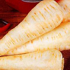 PARSNIP - White Gem - 500 seeds