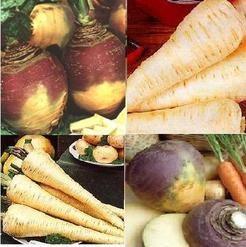 4 packs vegetable seeds - swede and parsnip