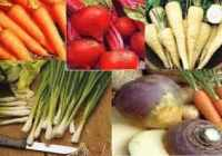 5 Packs - vegetable seeds - onion,swede parsnip etc