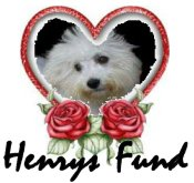 Henrys Fund Logo-new