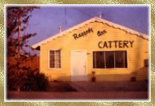 Raggedy Ann Cattery