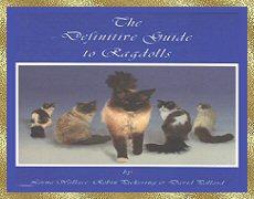 Definitive Guide to Ragdolls