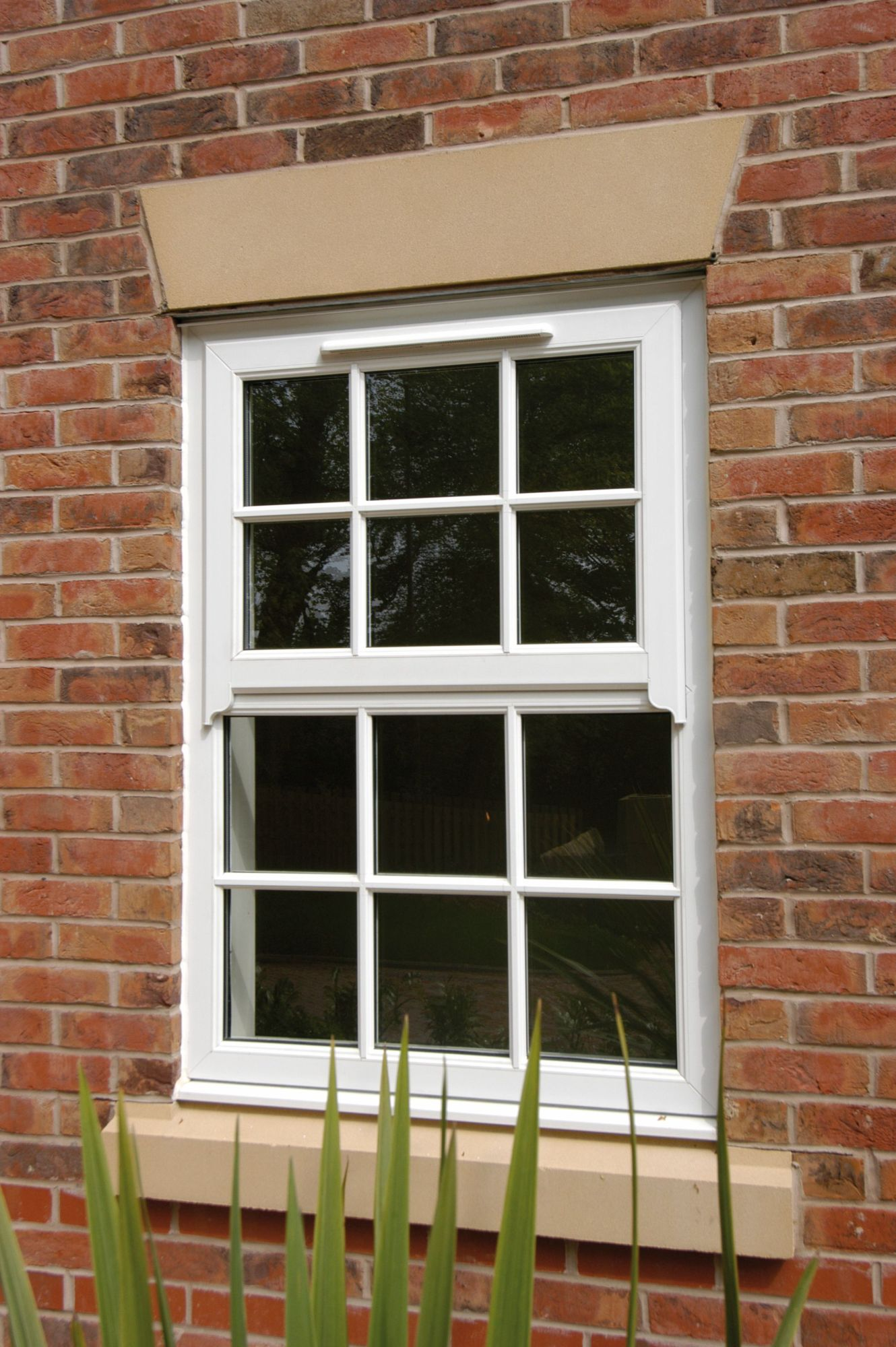 Mock Sash Horns Windows