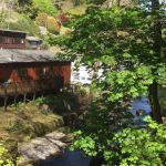 Sunny Lyn Holiday Park, Biker Friendly, Log Cabins, Lynton, Devon