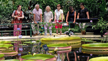 Give tickets to the Royal Botanic Gardens, Kew