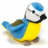 RSPB small singing bird, blue tit