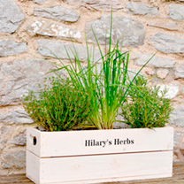 Personalised crates from Suttons Seeds