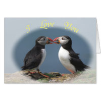 Zazzle have lots of lovely puffin greeting cards to choose from