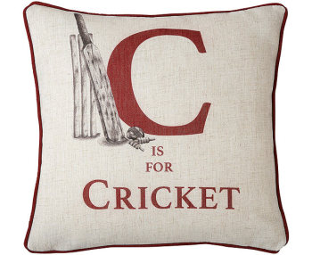 This cricket cushion is from The Original Gift Company