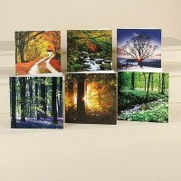 Go to Museum Selection to see their range of greeting cards