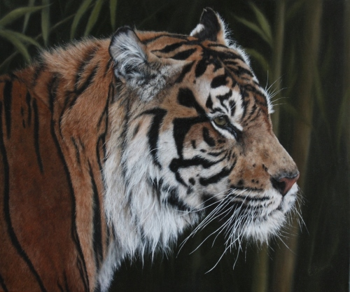 Click here to go to see the Wildlife Art at the David Shepherd Wildlife Foundation