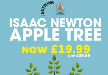 Click here to give an Isaac Newton Apple Tree
