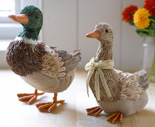 Quack, quack!  Mallards