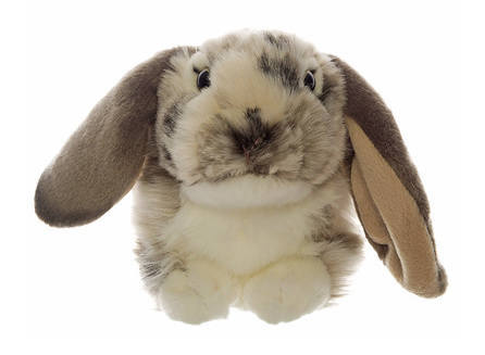 I'm a large Lop Eared Rabbit Soft Toy