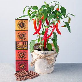 The Chilli Challenge Gift