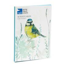 Fly away to the RSPB Online Shop