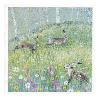 Greeting cards from the National Trust Online Shop