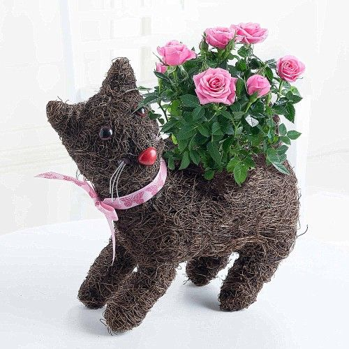 Jemima Cat Planter