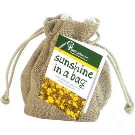Give Sunshine in a Bag