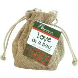 Give Love in a Bag - Wildflower Seeds!