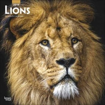 Lions Calendar 2019