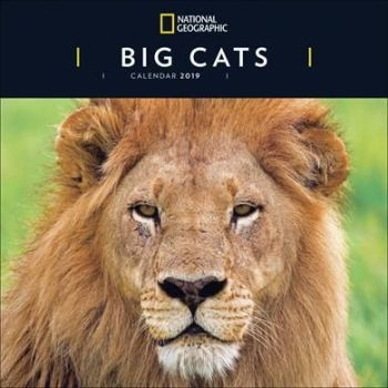 National Geographic Big Cats Calendar 2019
