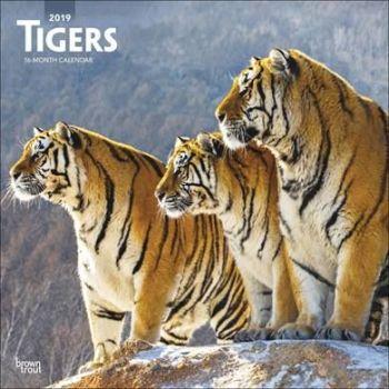 Tigers Calendar 2019