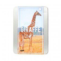 Adopt a giraffe gift pack