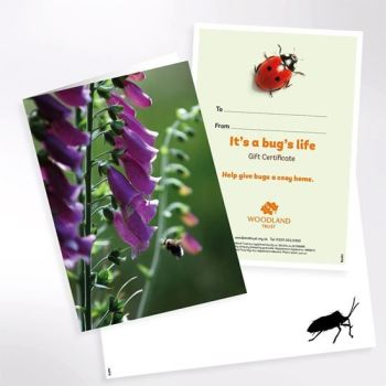 Give a conservation gift from the Woodland Trust