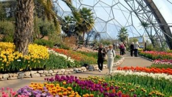 A Chocolate Tasting Private Tour for Two at The Eden Project