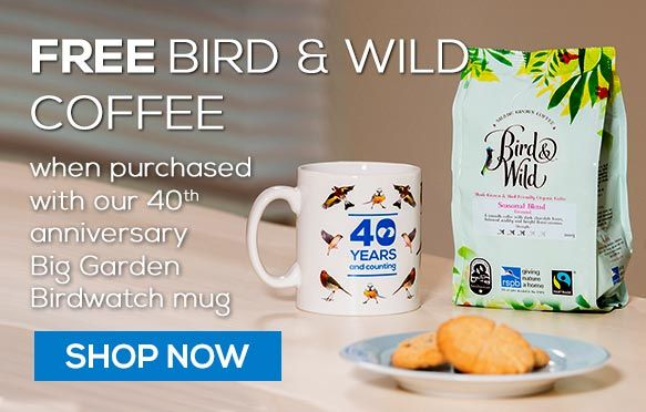 40th anniversary Big Garden Birdwatch mug