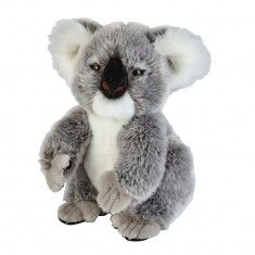 This Koala Soft Toy is available from the Natural History Museum