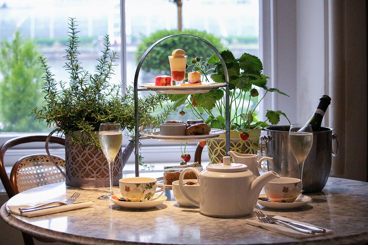 Visit to Kew Gardens with Prosecco Afternoon Tea at The Botanical for Two