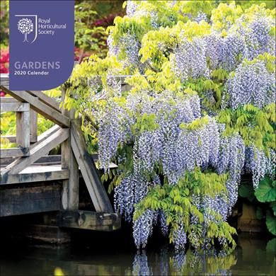 You can buy this pretty RHS Garden 2020 Calendar from the CalendarClub.co.uk