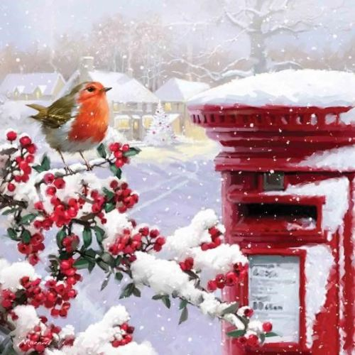 There are lots of Christmas cards with a robin theme to choose from