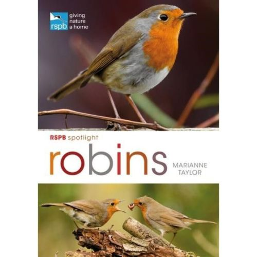 RSPB Spotlight series: Robins