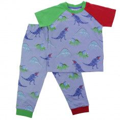 What about a pair of dinorsaur pyjamas?
