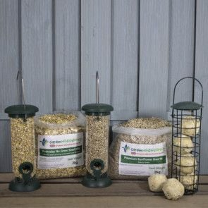 Starter Wild Bird Feeding Bundle