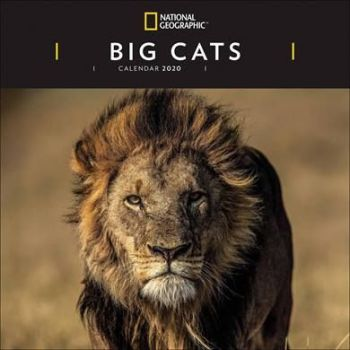 National Geographic Big Cats Calendar 2020