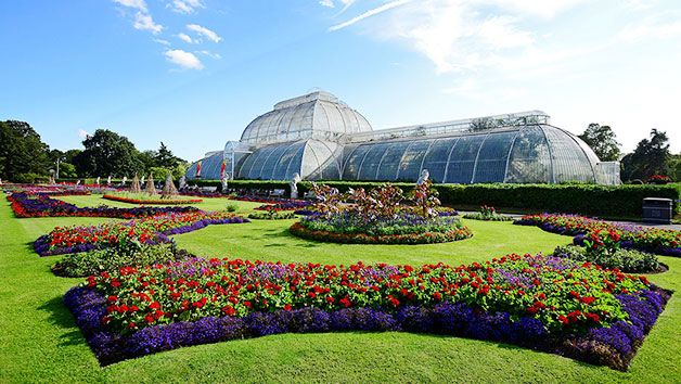 How about a visit to Kew Gardens?